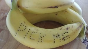 Food Waste Orphaned Bananas